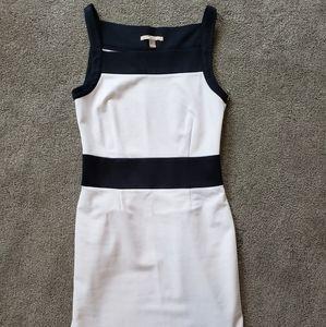 White and Navy Banana Republic Dress